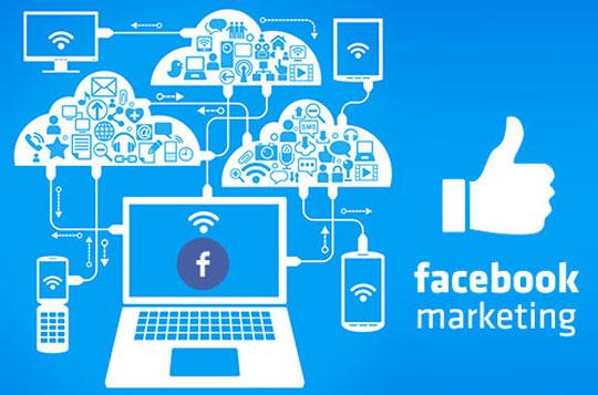 Сфера Digital: кейсы по продвижению в FB